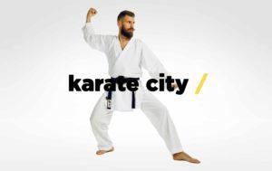 Karate UES