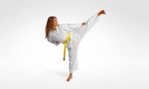 Shotokan Karate Dojo